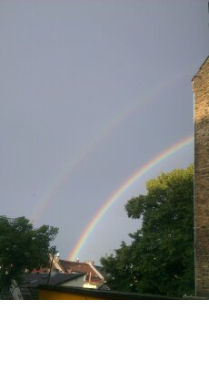 Regenbogen20161